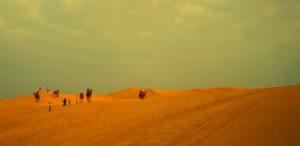 Camel safari at Sam Sand Dune