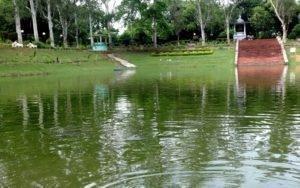 Venu Van Rajgir