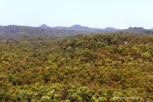 Green Valley at Pachmarhi