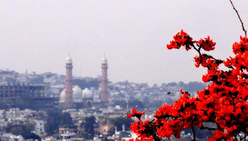 plan travel itinerary bhopal trip