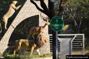 Entry to Gir forest National Park