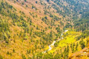 beautiful Valley near Gangtok