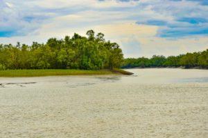 Sundarban National Park location