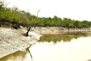 Tiding pattern in Sundarban