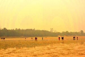 chasing the wave at chandipur beach
